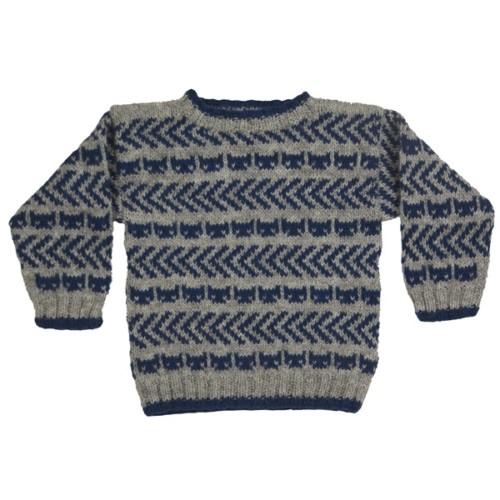 Teitur trøje