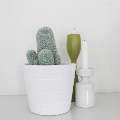 Kaktus-1